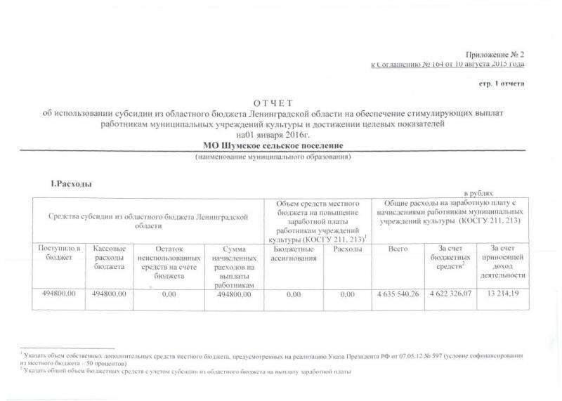 ДК отчет0001_1